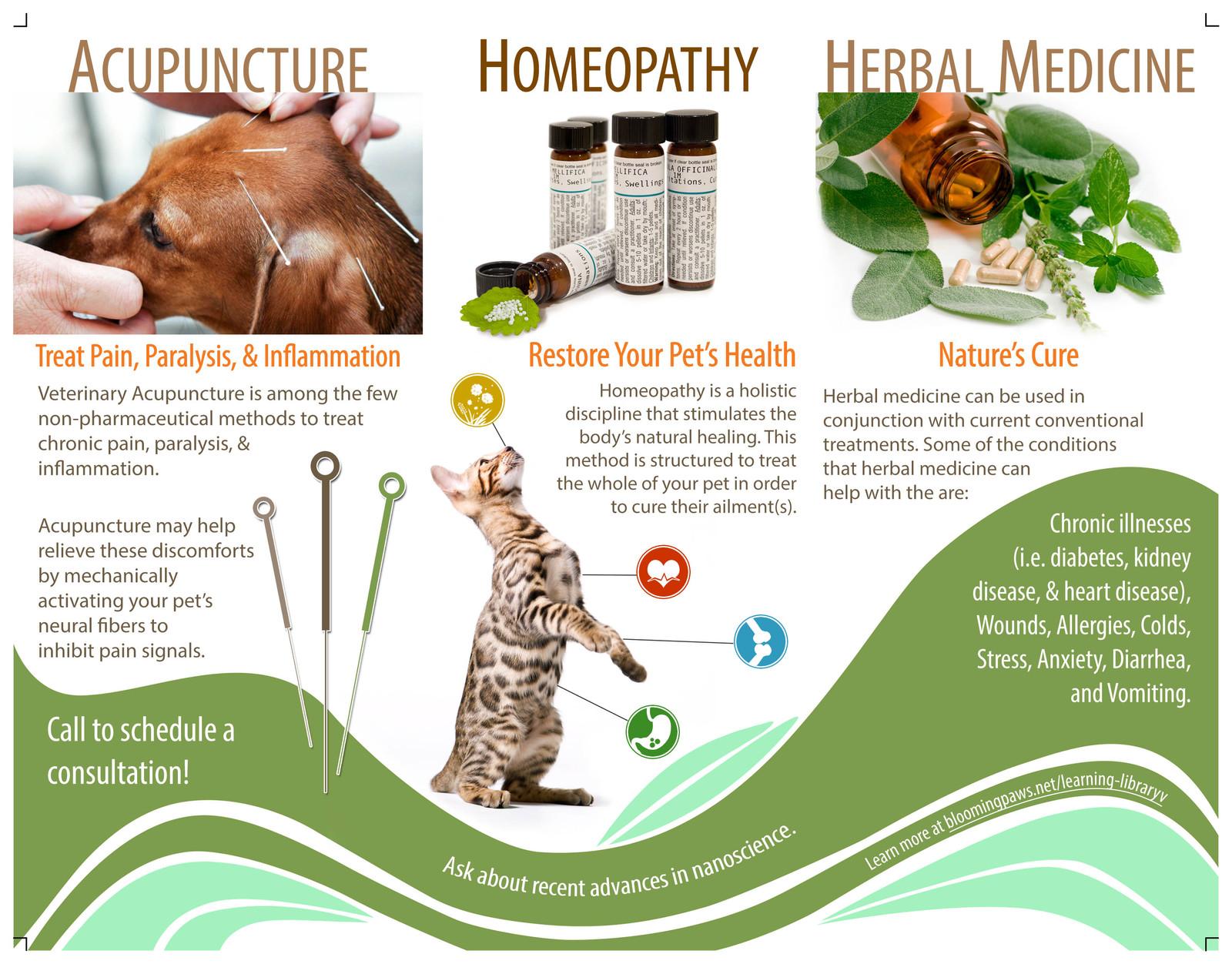 Vet Clinic Alternative Medicine Brochure (inside)