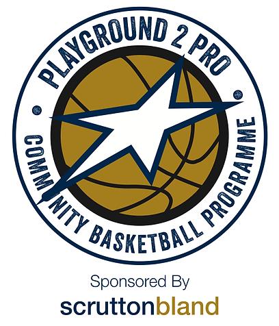 Playground2Pro Logo.PNG