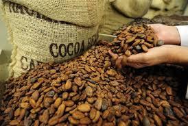 Precios del Cacao (ICCO)