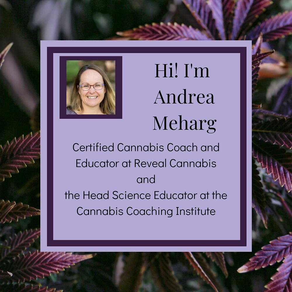 cannabis coach, marijuana coach