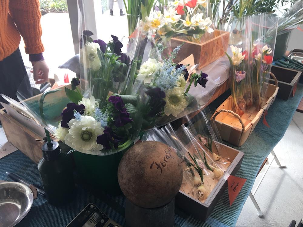 Flower & Plant