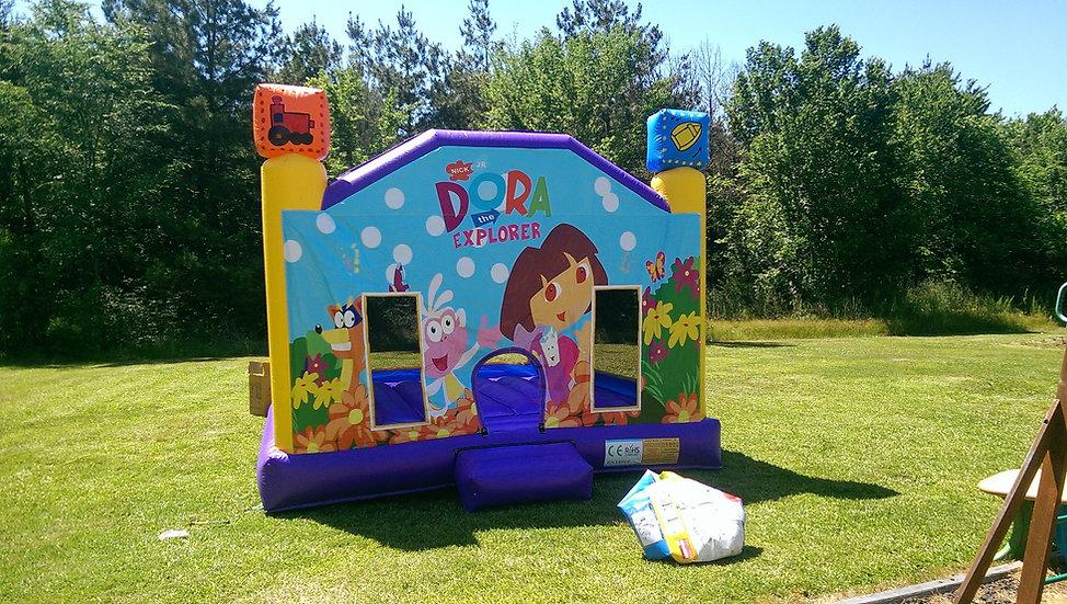 Dora The Explorer - 13 x 13