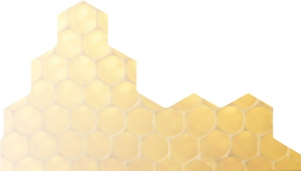 honeycomb backgroundbackground.png