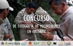 Concurso_Fotografía_Polinizadores