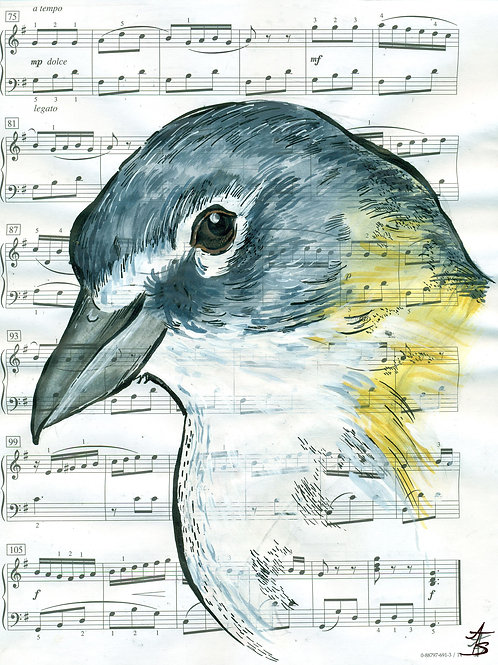 Music Bird Prints:Blue-Eyed Vireo