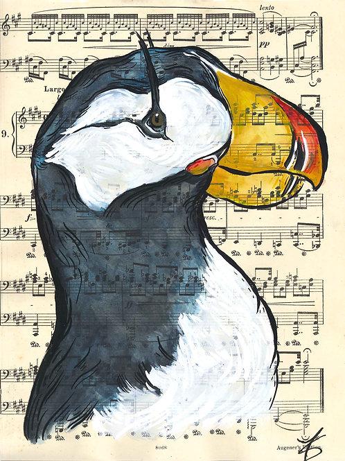Music Bird Prints:Horned Puffin