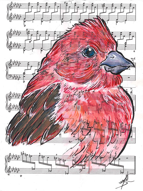 Purple Sparrow music bird
