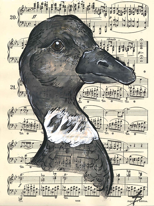 Music Bird Prints: Brant