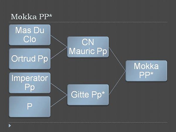 Stammbaum Mokka PP.pptx.jpg