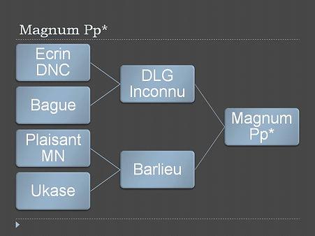 Stammbaum Magnum.jpg