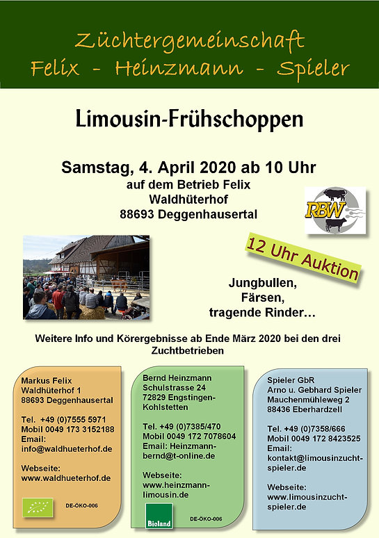 Flyer Auktion 2020 A5.jpg