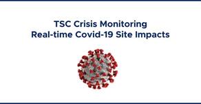 Covid-19: TSC Global Crisis Monitoring