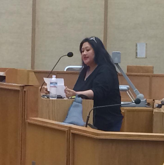 2017 City Council on PQ Village ReDevelopment