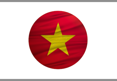 Hiring Vietnamese Translation Services: The Top 3 Risks