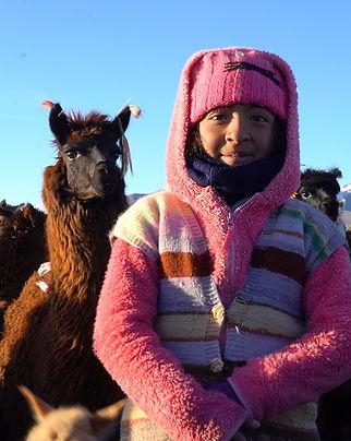 Dieses Foto zeigt ein Mädchen im Sajama National Park in Bolivien, das nebem einem Alpaka steht.