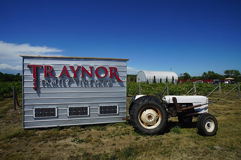 Traynor-Vineyards-03.jpg