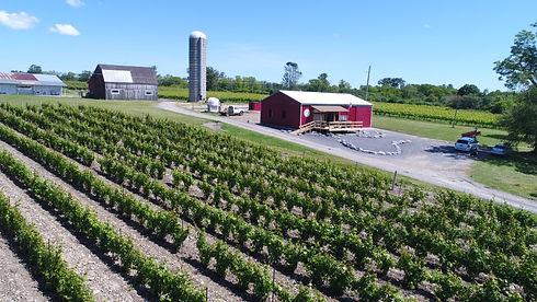 terra winery.jpg