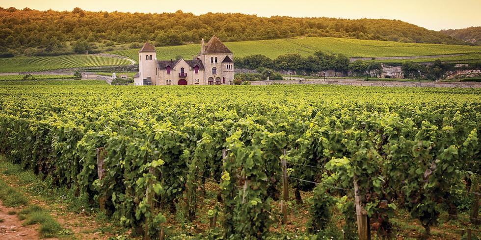 The County vs Burgundy Blind Tasting