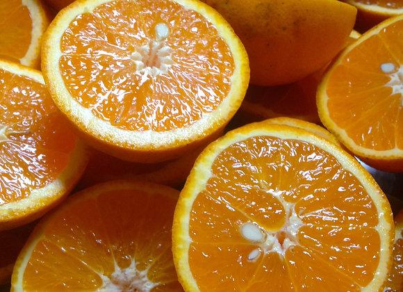 Orangen Sorte Navel BOX 8kg