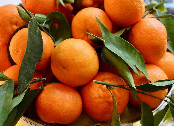 Clementinen saisonal 1Kg