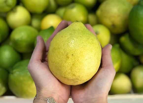 Zitronen Zagara Bianca 1kg