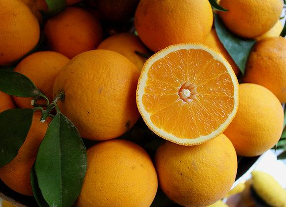 Orangen saisonal 1kg