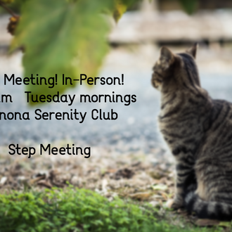 In-person Meeting Tuesday Mornings