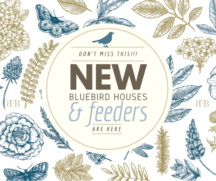POST.Bluebird-Houses-and-Feeders.png