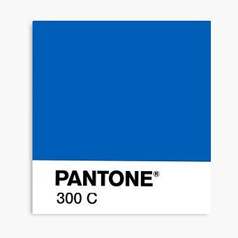 teinte pantone 300C