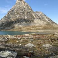 Ikkatteq. Tunnir liggja niðri við eitt nærliggjandi vatn. Á vinstru síðu sæst grundin á einum húsum.