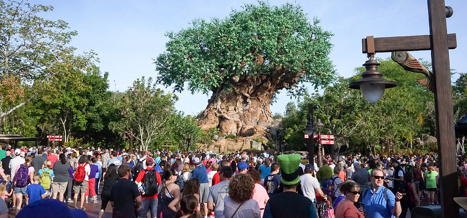 Disney-World-3723.jpg