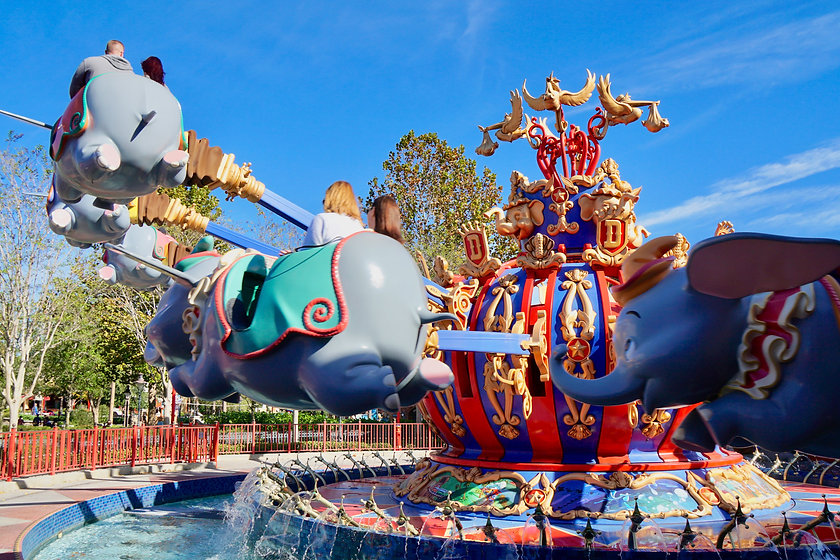 Disney-World-3784-1.jpg