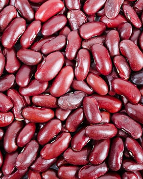 beans-316592_1280.jpg