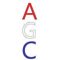 custom agc inc design, other services