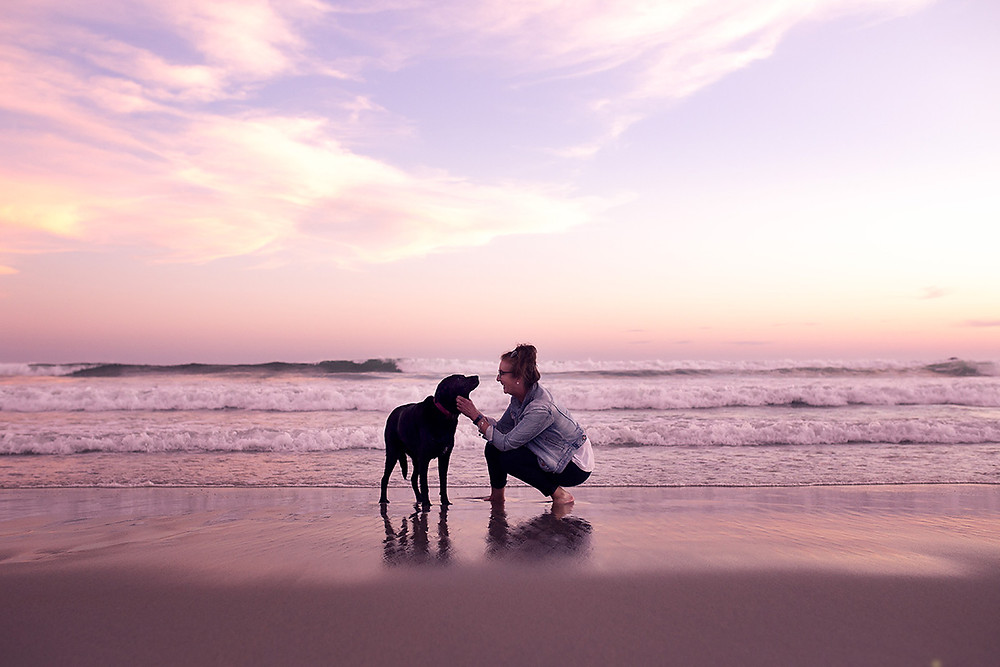A woman and her dog share a moment on St Clair Beach, Dunedin, at sunset