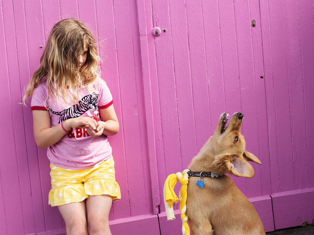 Girl and dog family photo