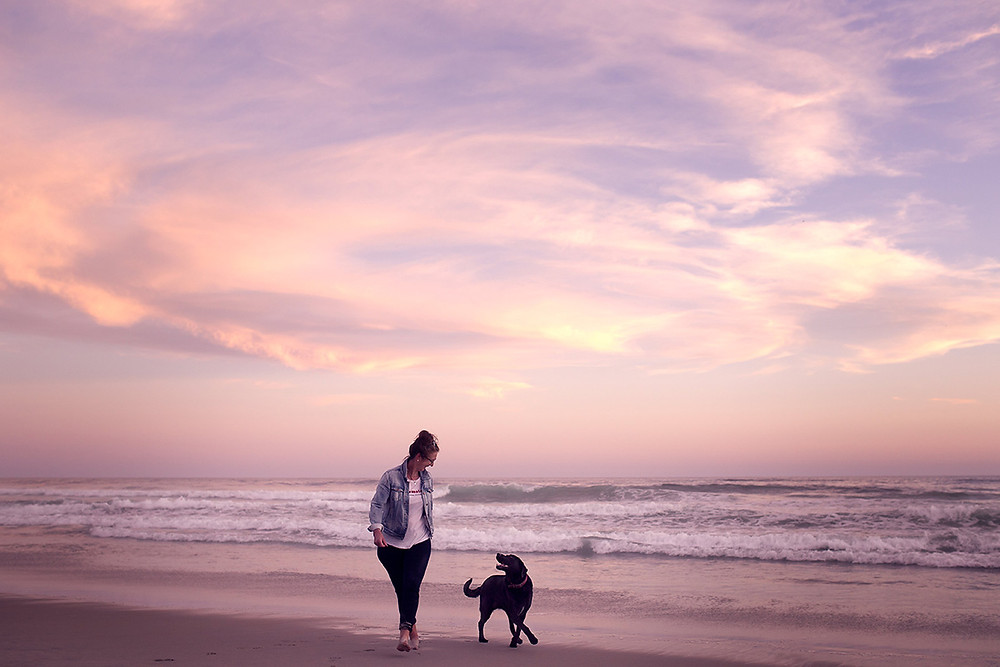 A woman and her black dog walk on the beach in Dunedin at sunset