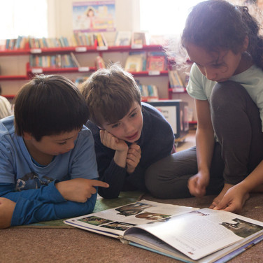 school library-1.jpg