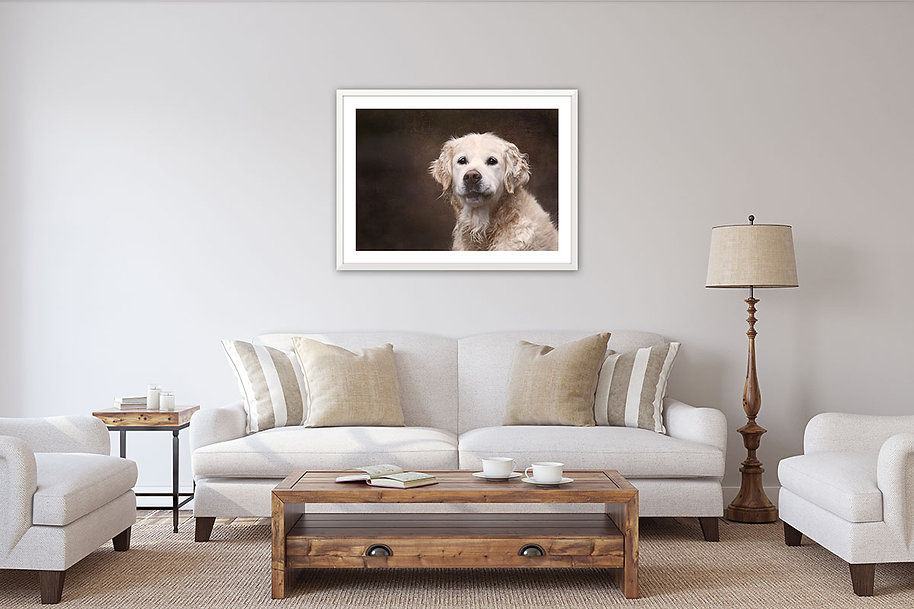 Lounge with framed dog print.jpg