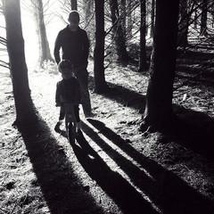 Dunedin photographer shadows.jpg