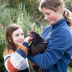 St-Leonards-School-Dunedin-chickens-environment-1_edited.jpg