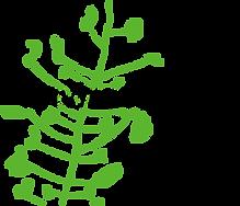 enviroschools_logo.png