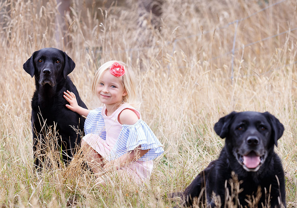 Patience and preparation helped get this beautiful family picture with dogs