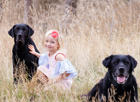 Prep your dog for a family photoshoot