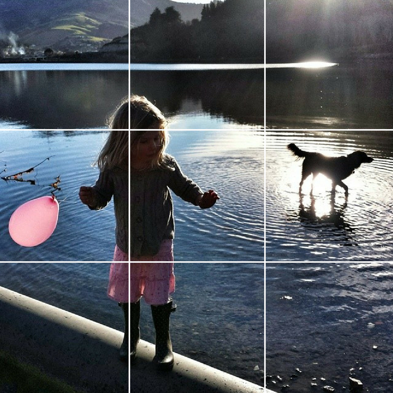 Rule of thirds grid lines show how to place subjects for a pleasing composition in a picture of a girl with a pink balloon and her dog in a mobile phone photograph by Dunedin photographer Edith Leigh