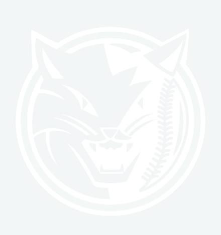BAYCATS-IMAGE-LOGO_edited_edited.png