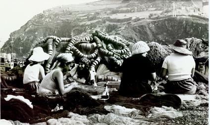 Fieldwork 1973
