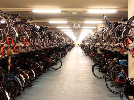 Niederlande & Belgien: Erste Ausschussreise für den Radverkehr