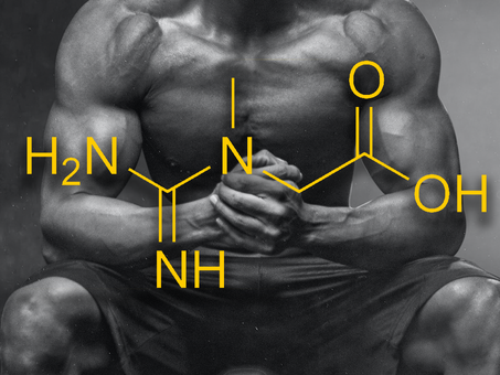 Nutrition & Supplementation 1.2 - Should you take creatine?