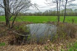 vp-Leyden-farm